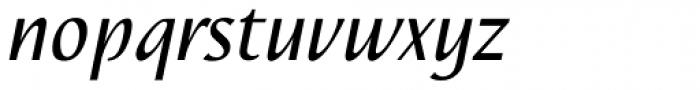 Nautilus Text Pro Italic Font LOWERCASE