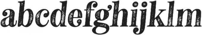 Neato Serif Rough otf (400) Font LOWERCASE