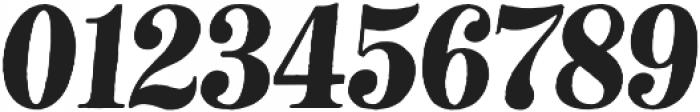 Neato Serif otf (400) Font OTHER CHARS