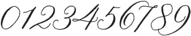 Nelly Script Regular otf (400) Font OTHER CHARS