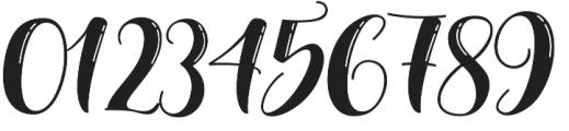 Nelvita Shine otf (400) Font OTHER CHARS