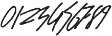 NetworkScript Regular otf (400) Font OTHER CHARS