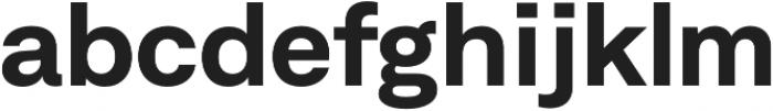 Neufile Grotesk Bold Extended otf (700) Font LOWERCASE