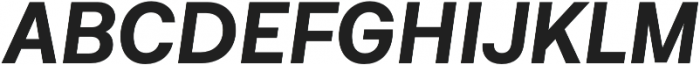 Neufile Grotesk Bold Italic otf (700) Font UPPERCASE