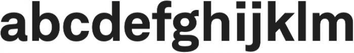 Neufile Grotesk Bold otf (700) Font LOWERCASE