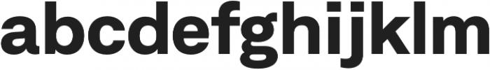 Neufile Grotesk ExtraBold Extended otf (700) Font LOWERCASE