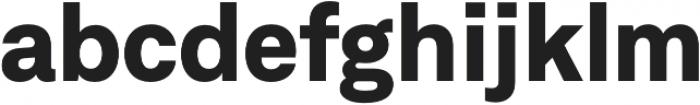 Neufile Grotesk ExtraBold otf (700) Font LOWERCASE