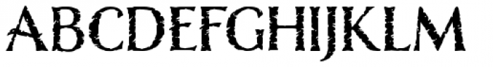 Nelson Rugged Font UPPERCASE