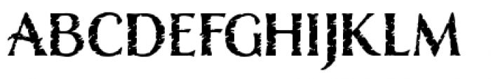 Nelson Rugged Font LOWERCASE