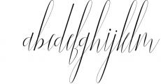 NEW YEAR BUNDEL 6 Font LOWERCASE