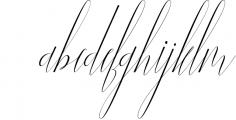 NEW YEAR BUNDEL 7 Font LOWERCASE