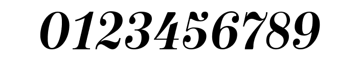 NeoplantaBG-BoldItalic Font OTHER CHARS