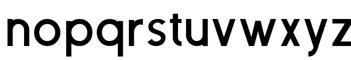 Neovix Basic Bold Font LOWERCASE