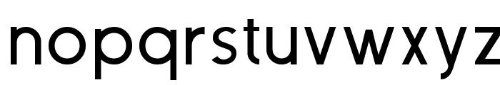 Neovix Basic Font LOWERCASE