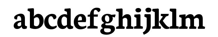 Neuton Bold Font LOWERCASE