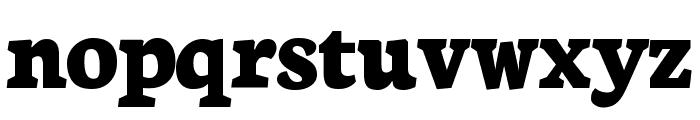 Neuton Extrabold Font LOWERCASE