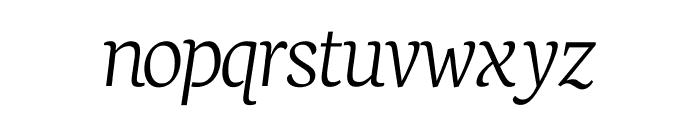 Neuton Extralight Italic Font LOWERCASE