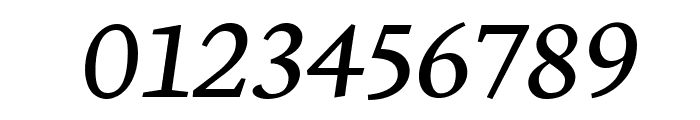 Neuton Italic Font OTHER CHARS