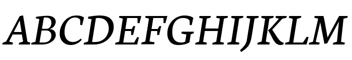 Neuton Italic Font UPPERCASE