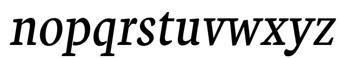 Neuton Italic Font LOWERCASE