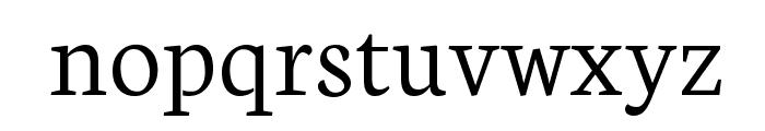 Neuton Light Font LOWERCASE