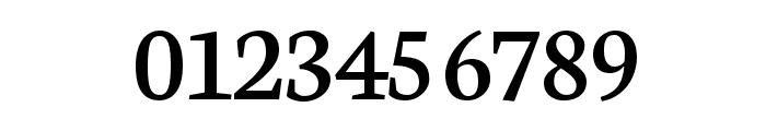 Neuton Regular Font OTHER CHARS