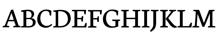 Neuton Regular Font UPPERCASE