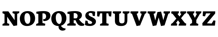 Neuton SC Bold Font LOWERCASE