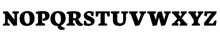 Neuton SC Extrabold Font UPPERCASE