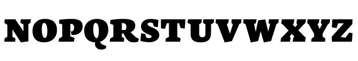 Neuton SC Extrabold Font LOWERCASE