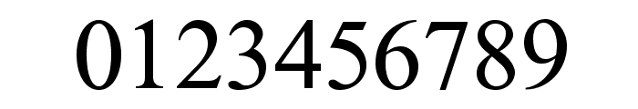 NewAthenaUnicode Font OTHER CHARS