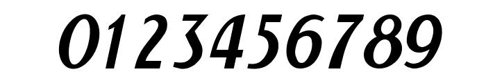 NewForum Italic Font OTHER CHARS