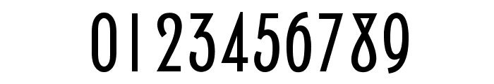 NewPortLandOpti-Regular Font OTHER CHARS