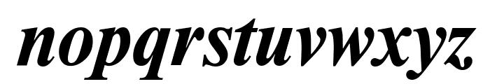 NewtonCTT BoldItalic Font LOWERCASE