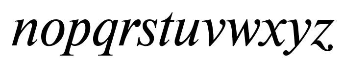 NewtonCTT Italic Font LOWERCASE
