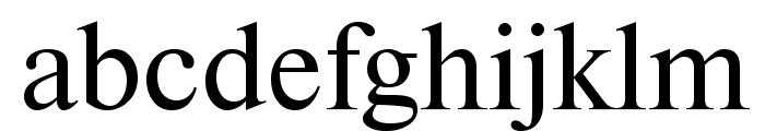NewtonCTT Font LOWERCASE