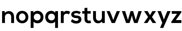 NexaBold Font LOWERCASE