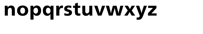 Neue Frutiger Heavy Font LOWERCASE