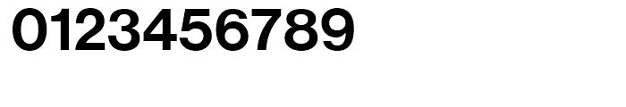 Neue Haas Grotesk Display 65 Medium Font OTHER CHARS