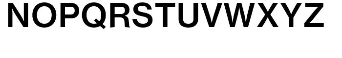 Neue Haas Grotesk Text 65 Medium Font UPPERCASE