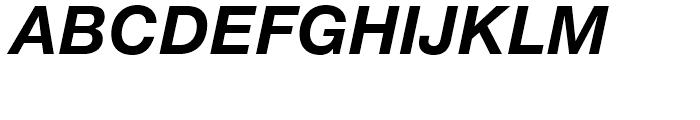 Neue Helvetica 76 Bold Italic Font UPPERCASE