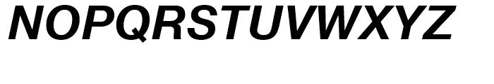 Neue Helvetica Thai Bold Italic Font UPPERCASE