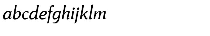 Neue Thannhaeuser Italic Font LOWERCASE
