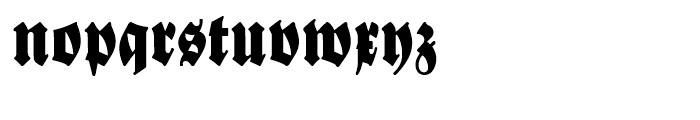 New Bayreuth Regular Font LOWERCASE