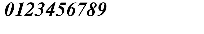 Newton Bold Italic Font OTHER CHARS
