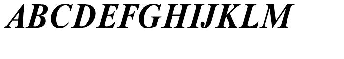 Newton Bold Italic Font UPPERCASE