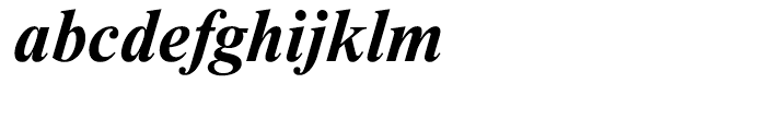 Newton Bold Italic Font LOWERCASE