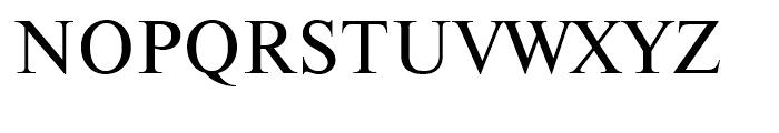 Newton Regular Font UPPERCASE
