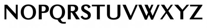New Millennium Sans Bold Font UPPERCASE