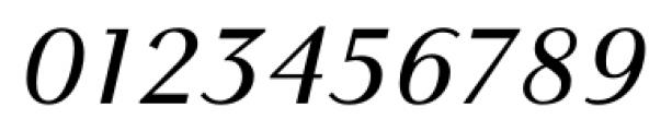 New Millennium Sans Italic Font OTHER CHARS